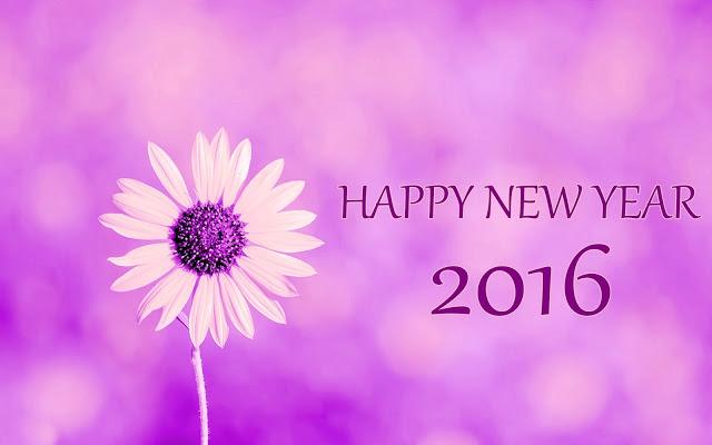 การ์ดปีใหม่-2559-ดอกไม้-พื้นหลังปีใหม่-สีชมพู